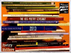 Let the BIG Poetry Giveaway 2013 begin!
